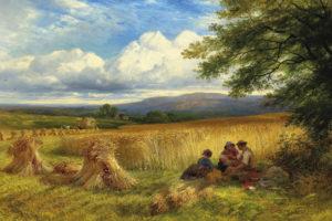 Harvest Rest